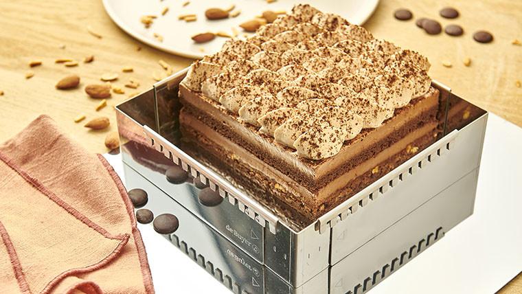 Chocolate dessert - Entremets