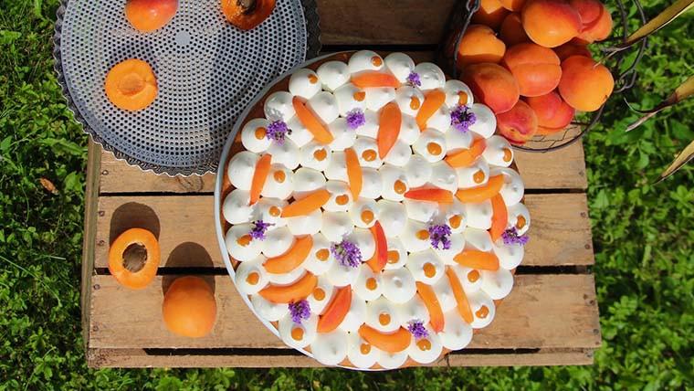 Creamy apricots cake